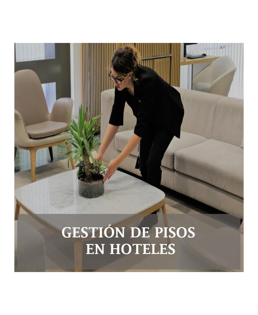 Curso de Gobernanta: Gestión de Pisos en Hoteles de Lujo